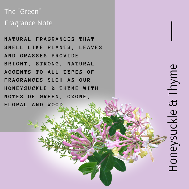 The _Green_ fragrance Note (3)