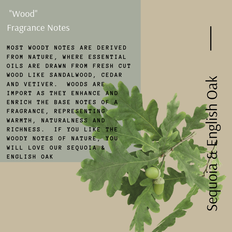 The _Wood_ fragrance Note (4)